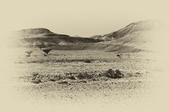 Loneliness and emptiness of the desert. Loneliness and emptiness of the rocky hills of the Negev Desert in Israel. Breathtaking landscape and nature of the royalty free stock image