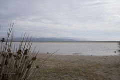 Loneliness minimalist winter. Panorama of the Poetto beach of Cagliari - Sardegna Stock Image