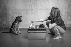 Loneliness - is when you offer your puppy to play chess Royalty Free Stock Photo
