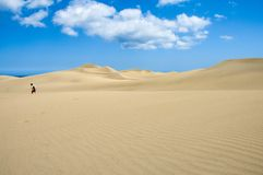 Lonely. Lost in the desert Stock Photos
