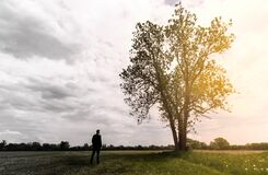 Lonely adult man looks at a tree. sad and thoughtful in his depression