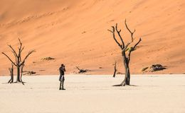 Lonely adventure travel photographer at Deadvlei crater in Sossusvlei. Territory - Namibian world famous desert - Wander concept with wild landscape in Namibia stock photos
