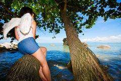 Lonely angel hiding on a tree by the sea. Lonely angel hiding on a tree looking out to the sea stock photos
