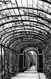 Lonely arcade in a garden. Lonely arcade walk in a beautiful garden, black and white Stock Photos