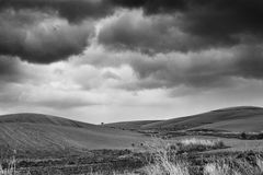 Lonely Art Nature Hills under cloudy sky. Stormy weather black and white image Stock Image