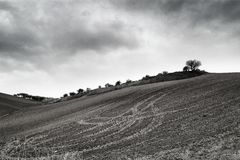 Lonely Art Nature Hills under cloudy sky. Stormy weather black and white image Royalty Free Stock Images
