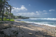 Lonely Beach in Barbados Royalty Free Stock Photography