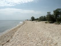 Lonely beach of the Black Sea 4. Wild beach on the Black Sea.  Black Sea at the mouth of the Danube into the sea Stock Photography