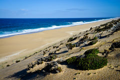Lonely beach, Portugal Royalty Free Stock Image