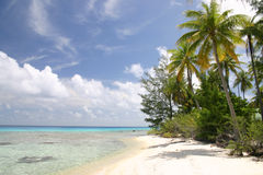 Lonely beach on Rangiroa island Royalty Free Stock Photos