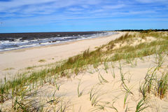 Lonely beach with vegetation. Lonely uruguayan beach with green vegetation Royalty Free Stock Photography