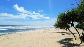 Lonely Beautiful beach in Bali indonesia. Lonely Beautiful beach with palms in Bali indonesia on a sunny day with some clouds Stock Photo