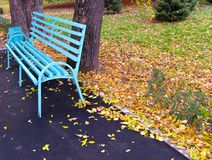 Lonely bench 1. Empty bench in autumn park Stock Image