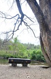 Lonely bench. Valley view - lonely wooden bench under the tree Royalty Free Stock Image