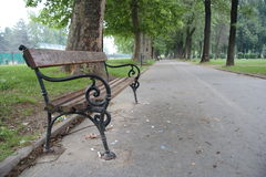 A lonely bench. In the park Stock Image