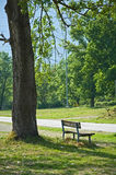 Lonely bench stock photos