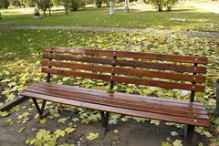 A lonely bench. Surrounded by fallen leaves in autumn park Stock Photography