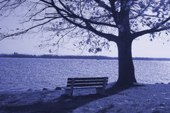 Lonely bench. Near the lake Stock Photo