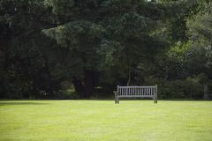 Lonely bench. Unoccupied park bench against trees in sunshine stock images