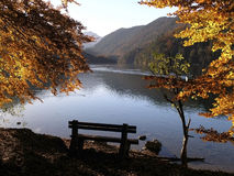 Lonely bench at Alps Lake. royalty free stock photography