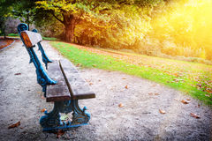 Lonely bench in autumn city park Stock Photography