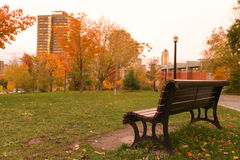 Lonely Bench In The Autumn Park. Canada Royalty Free Stock Images