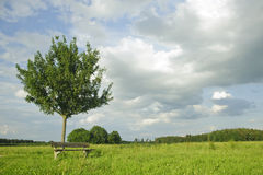 Lonely bench with beautiful rural scenery Royalty Free Stock Image