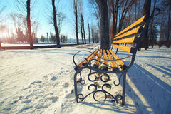 Lonely bench in city park Royalty Free Stock Photos