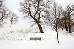 A lonely bench covered in deep snow Royalty Free Stock Photo