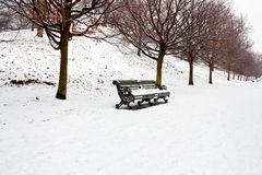 A lonely bench covered in deep snow Stock Images