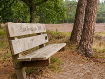 Lonely bench in Dutch heathland Royalty Free Stock Photography