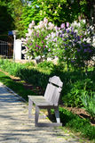 Lonely bench in the garden. Lonely gray bench in the spring garden Stock Photo