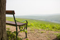 Lonely bench near tree with hills Royalty Free Stock Photos