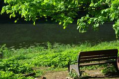 Lonely bench in park royalty free stock photography