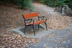 Lonely bench in the park Royalty Free Stock Images