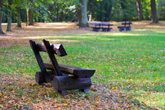 Lonely bench. In the park Stock Image