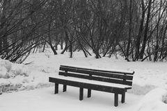 Lonely bench in the park in a snowstorm. Royalty Free Stock Image