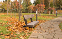 Lonely bench Stock Image