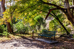 A lonely bench in the shade of a large maple tree in Texas Royalty Free Stock Photography