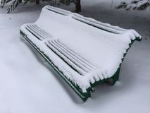 Lonely bench under Christmas trees. Lonesome bench under fir-trees trees covered with white snow royalty free stock photos