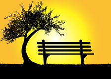 Lonely bench under a tree on a mountain at sunset. Illustration of lonely bench under a tree on a mountain at sunset Stock Image