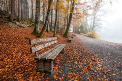 Lonely Benches Stock Photos