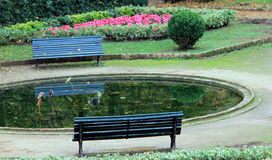 Lonely benches Royalty Free Stock Images