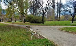 Lonely benches in the park royalty free stock photo
