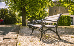 Lonely benches in a park Stock Images