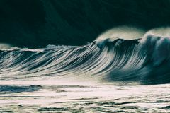 Lonely big wave breaking. On sea royalty free stock image