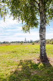 Lonely birch on the background of an Orthodox monastery Royalty Free Stock Images