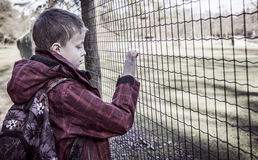 Lonely bullied boy Stock Image