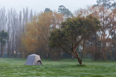 Lonely camping tent on grass under tree in the morning mist. Royalty Free Stock Images