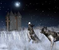 Lonely Castle in Winter Moonlight Stock Image